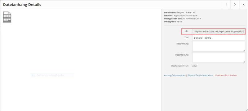 Detail-Ansicht einer Datei in WordPress